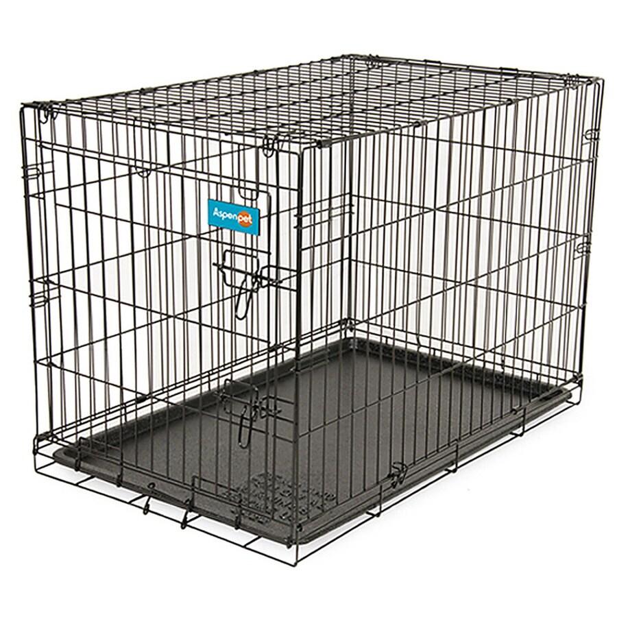 Aspen Pet 2-ft x 1.5-ft x 1.75-ft Black Collapsible Wire Pet Crate