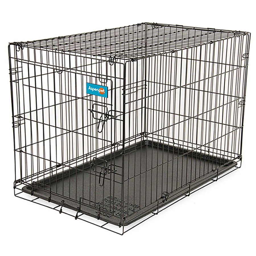 Aspen Pet 3.5-ft x 2.33-ft x 2.58-ft Black Collapsible Wire Pet Crate