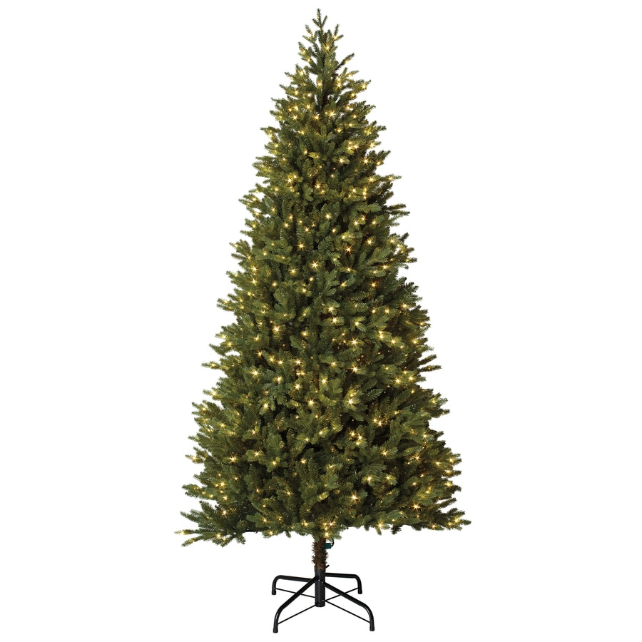 holiday living 75 ft pre lit montaspruce slim artificial christmas tree with 800 constant - Christmas Tree Slim