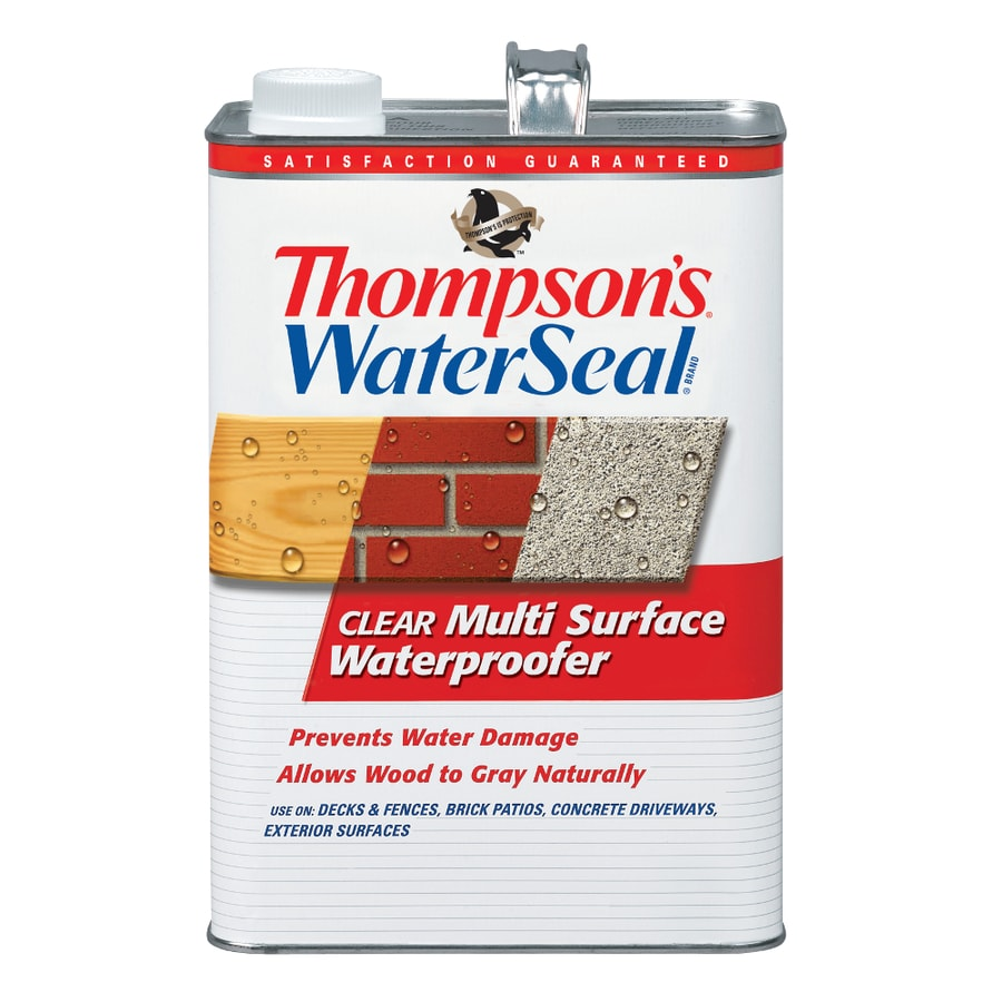 Thompson's WaterSeal Clear Multi-Surface Waterproofer Low Voc