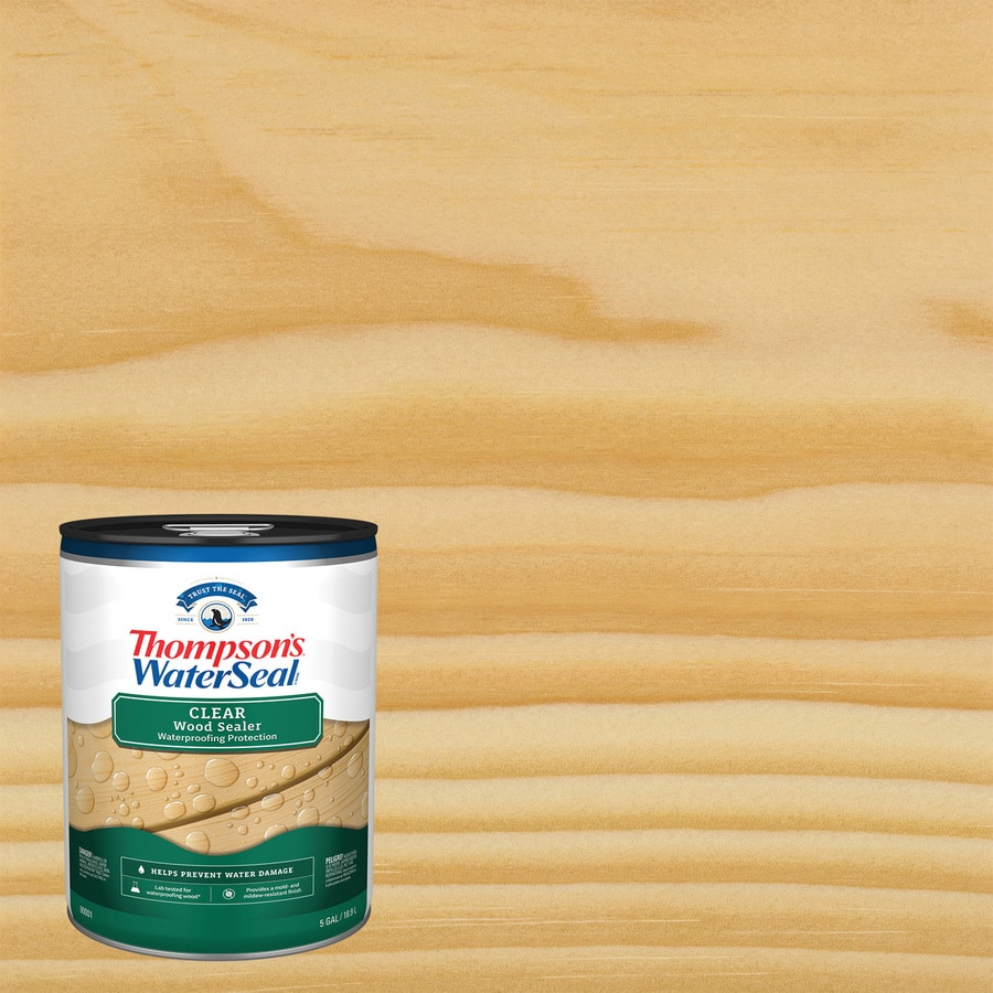 Thompson's WaterSeal Clear Exterior Stain (Actual Net Contents: 640-fl oz)