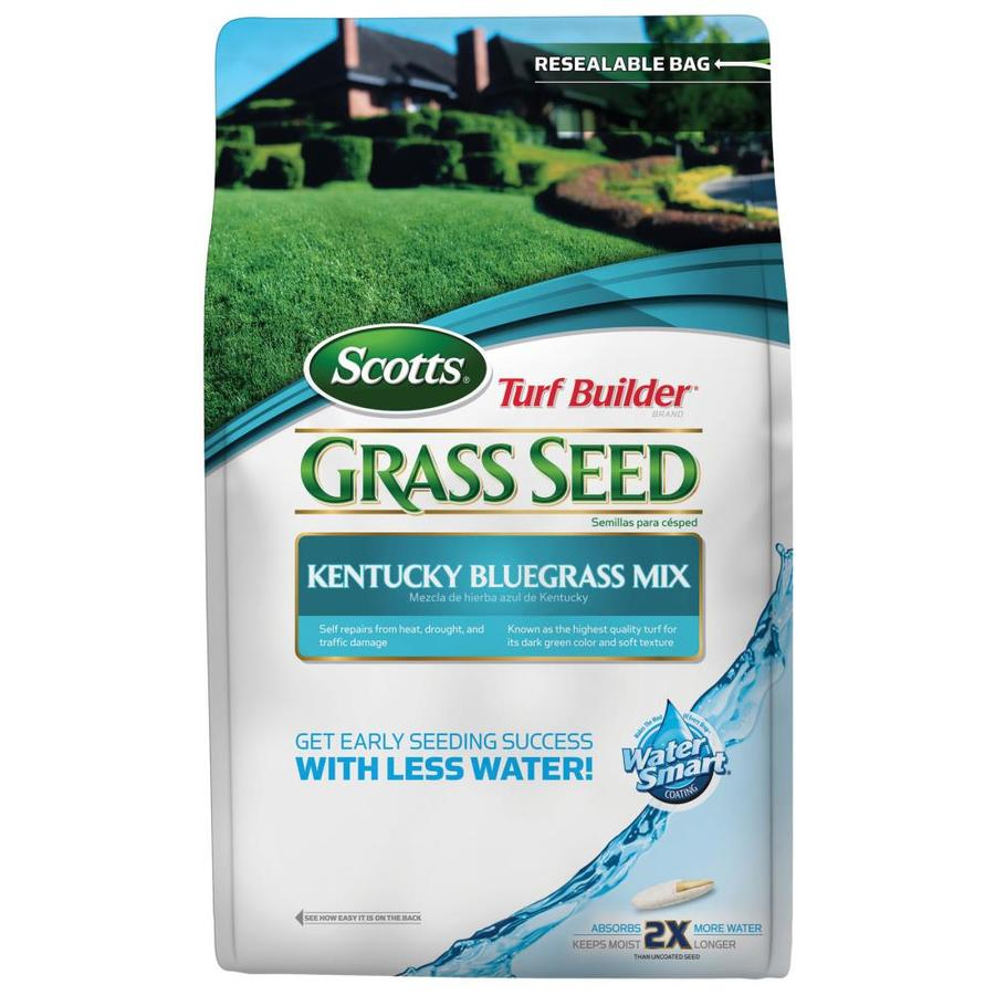 Scotts Turf Builder 7-lb Bluegrass Seed