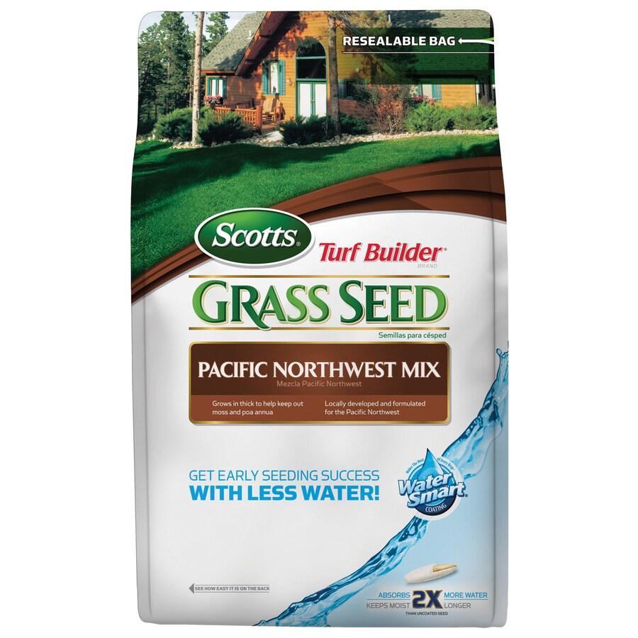 Scotts Turf Builder Pacific Northwest Mix 20-lb Bluegrass Seed