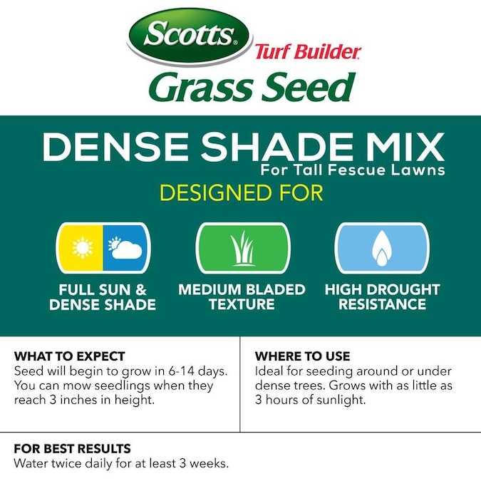 Scotts Tall Fescue Grass Seed In The Grass Seed Department