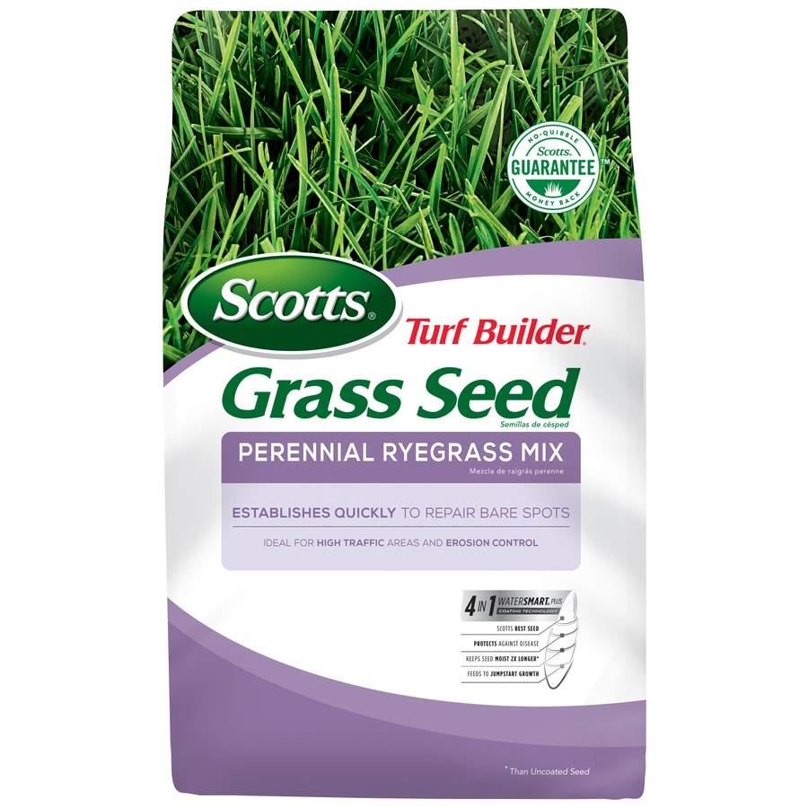 Scotts Scotts Turf Builder Perennial Ryegrass Mix 7 Pound(S) Grass Seed