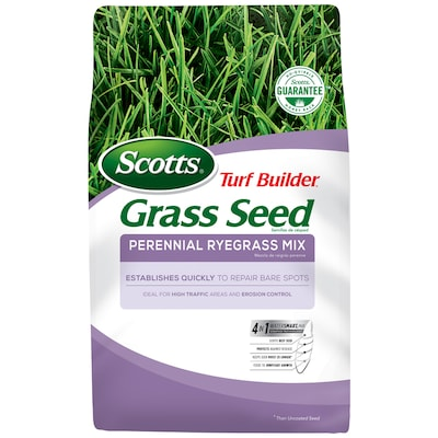 Awe Inspiring Scotts 7 Lb Perennial Ryegrass Seed At Lowes Com Home Interior And Landscaping Dextoversignezvosmurscom