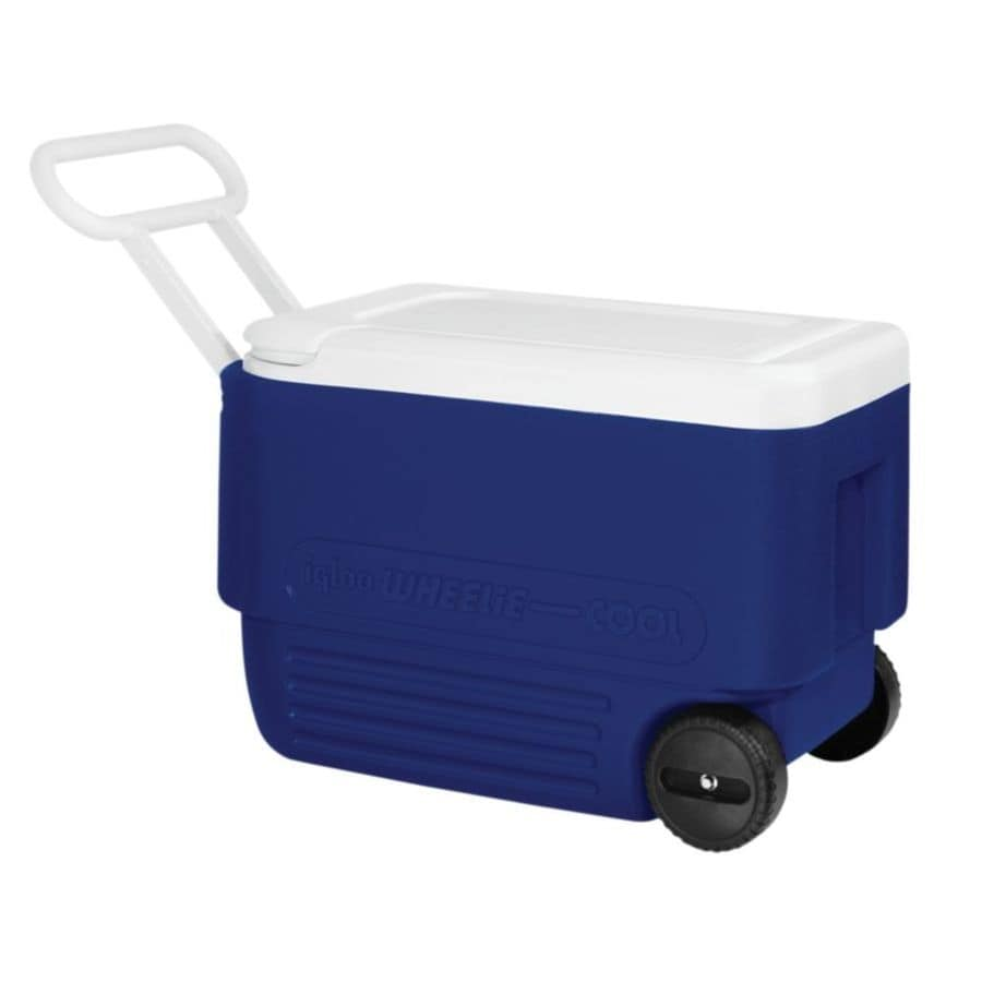 Shop Igloo 38 Quart Wheeled Plastic Chest Cooler At Lowes Com