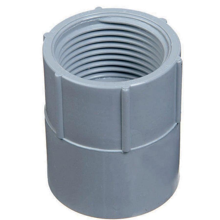 CARLON 1-1/4-in PVC Adaptor