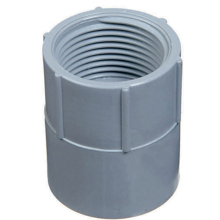CARLON 2-in PVC Adaptor