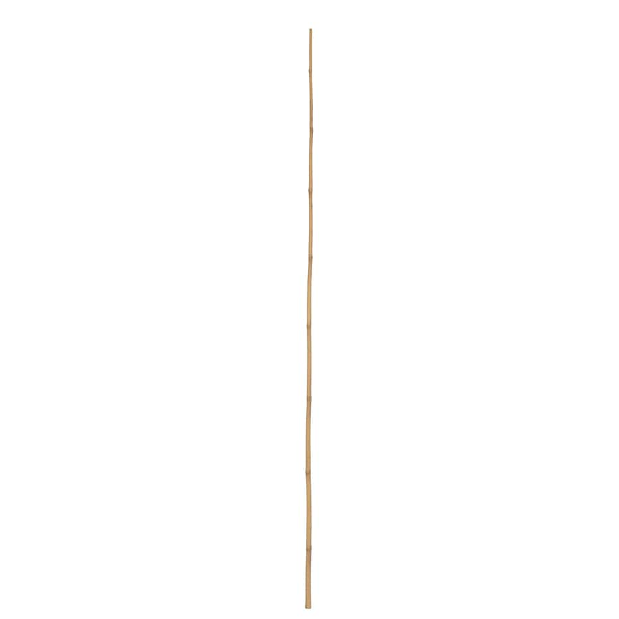 shop garden treasures 72 in bamboo landscape stakes at