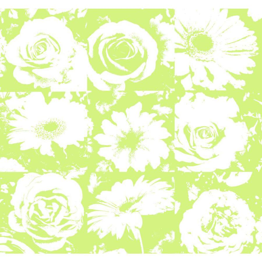 York Wallcoverings Risky Business Ii Lime/White Paper Floral Wallpaper