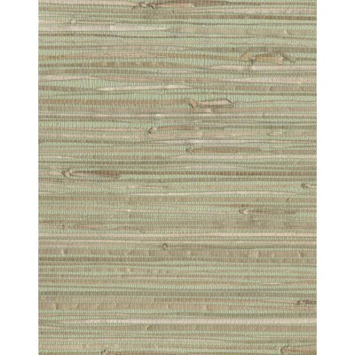 York Wallcoverings Grasscloth Book 72 Sq Ft Green Paper