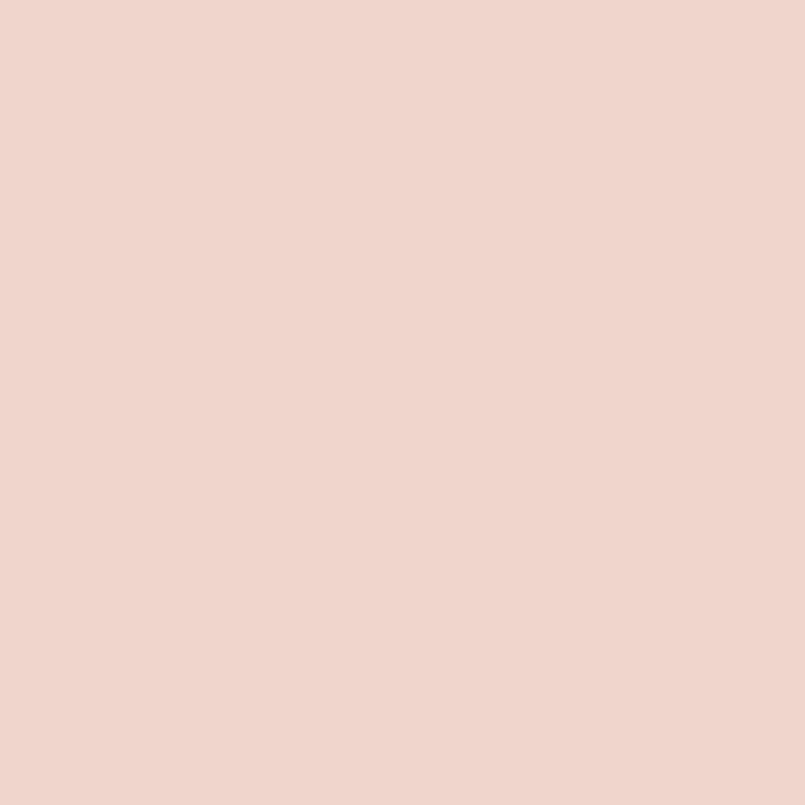 Shop hgtv home by sherwin williams enchanting pink for Sherwin williams paint sample
