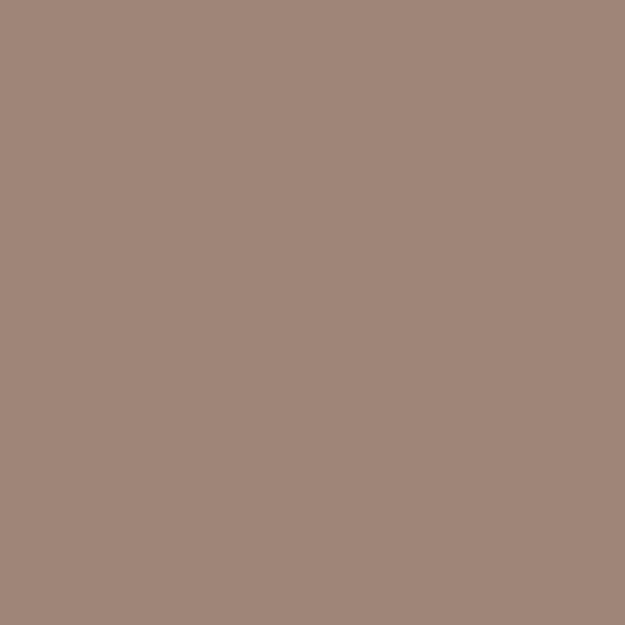 HGTV HOME by Sherwin-Williams Flat Steppe Interior Eggshell Paint Sample (Actual Net Contents: 29.5-fl oz)