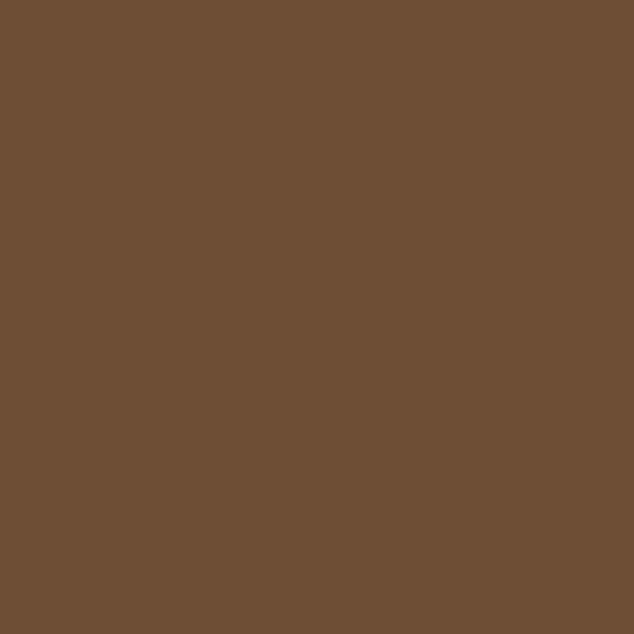 Hgtv Home By Sherwin Williams Back In The Saddle Interior Eggshell Paint Sample Actual