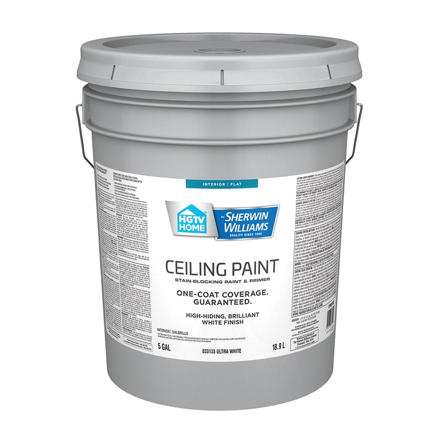 HGTV HOME by Sherwin-Williams Ceiling White Flat Latex Interior Paint and  Primer in One