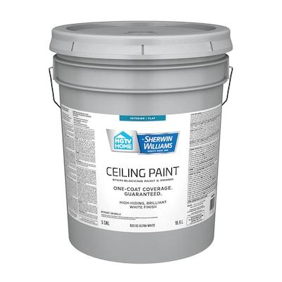 Ceiling Flat White Latex Paint Actual Net Contents 640 Fl Oz