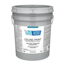 Shop Paints Primers At