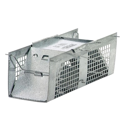 Havahart X-Small 2-Door Mouse Trap at Lowes com