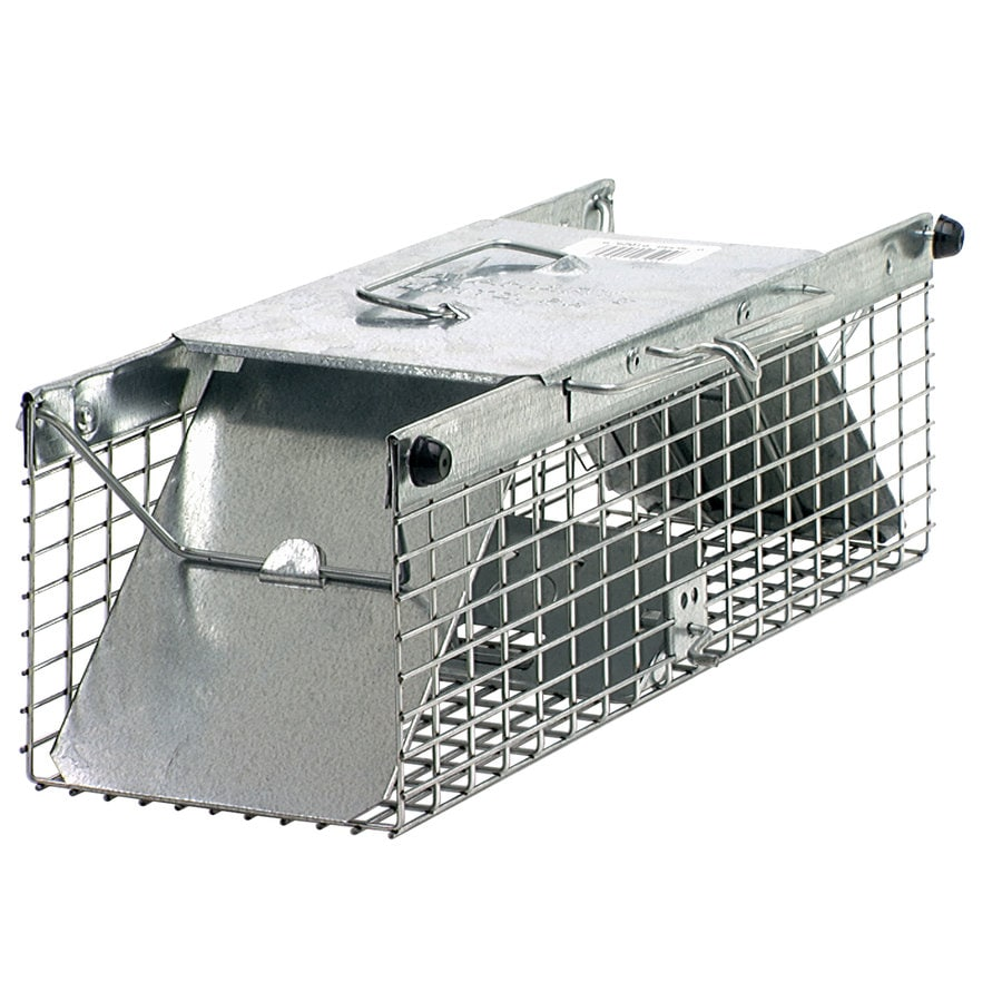 Shop Havahart Small 2-Door Rodent/Squirrel Cage Trap at Lowes.com