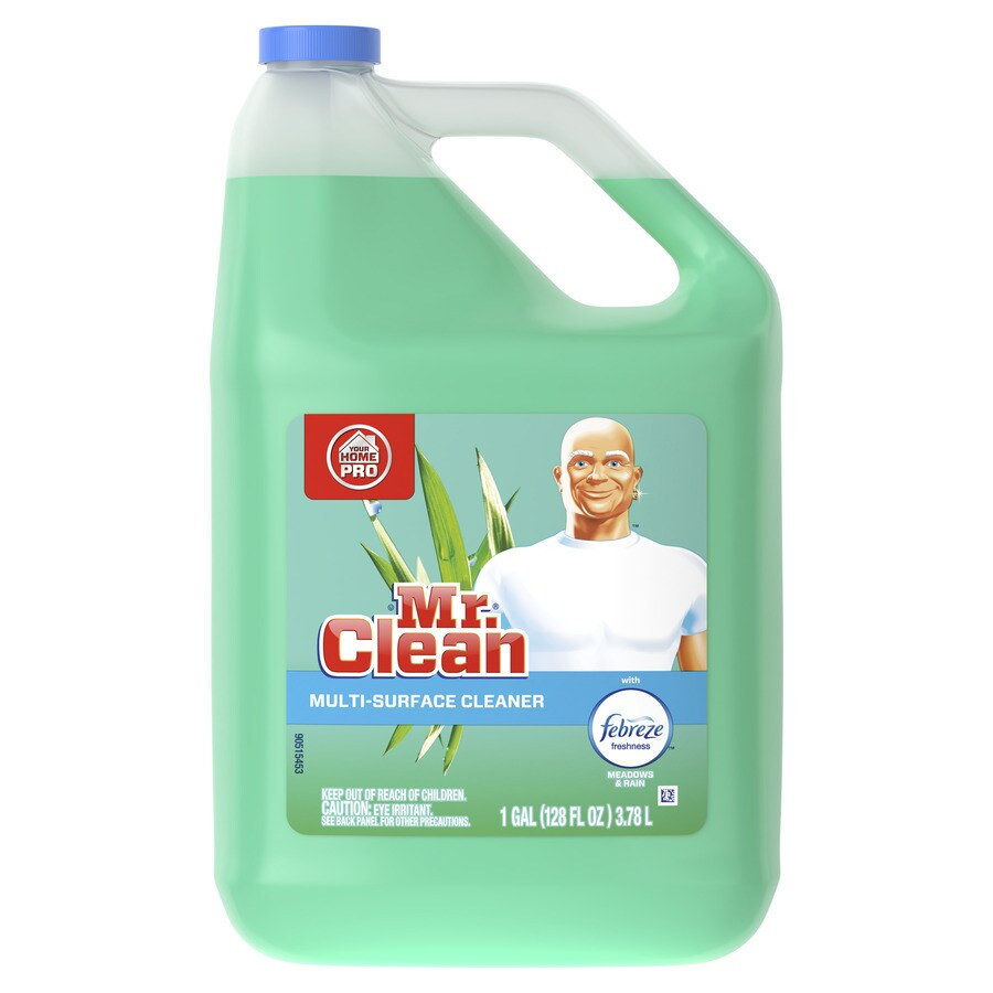 Shop Mr Clean Home Pro 128 Fl Oz Rain All Purpose Cleaner