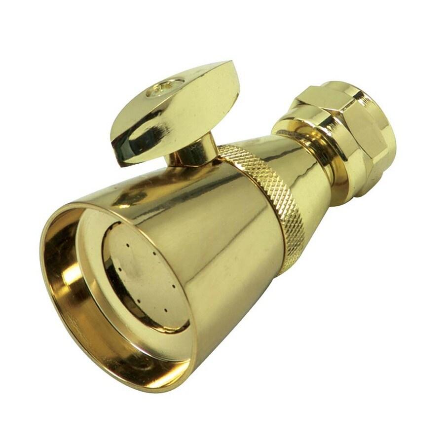 Danco Polished Brass 1-Spray Shower Head