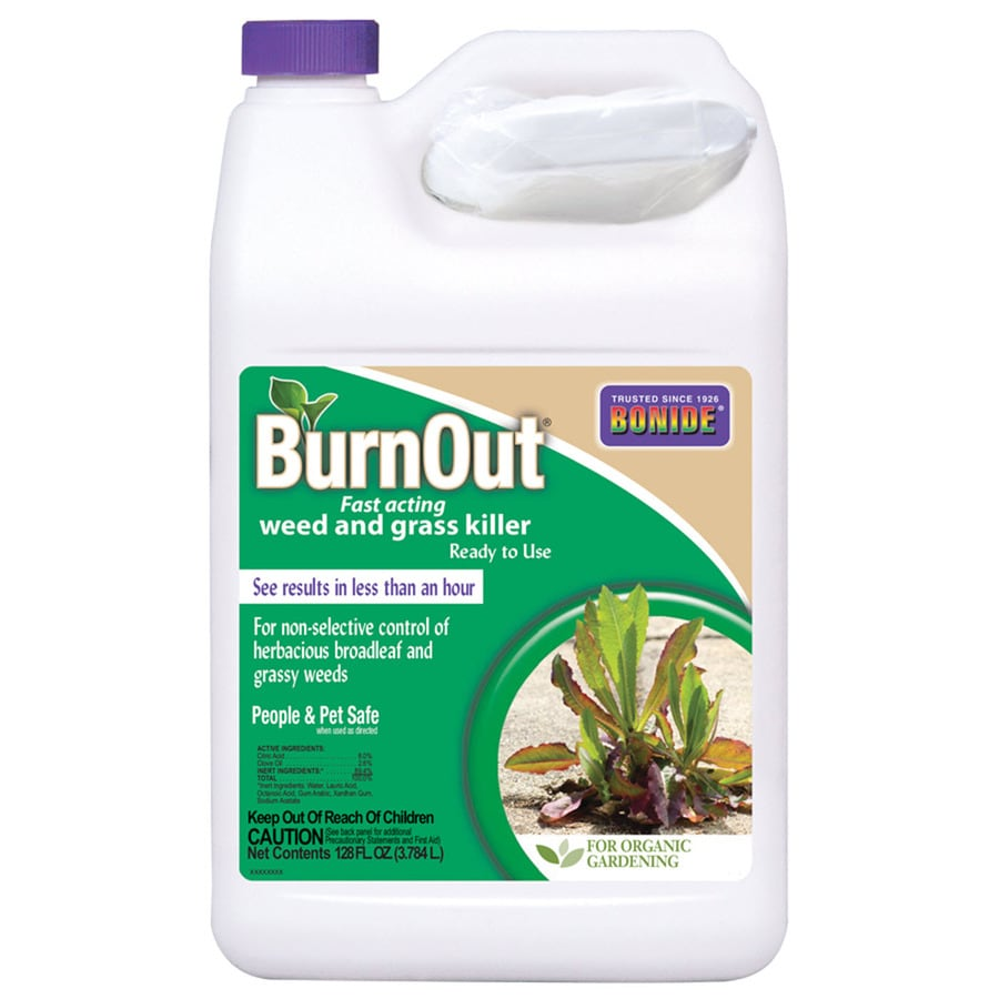 Bonide Burnout 1-Gallon Weed and Grass Killer