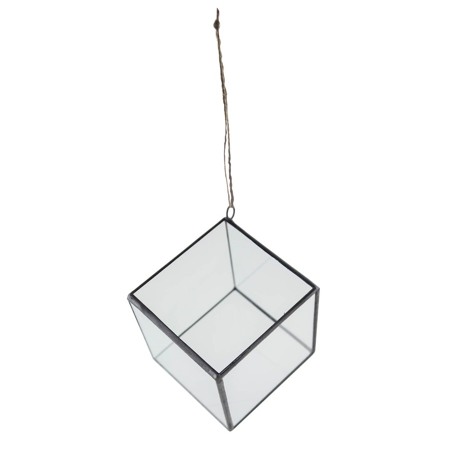 Syndicate Home & Garden 4-in x 4-in Crystal Glass Hanging Terrarium