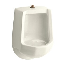KOHLER 16.25 In W X 24 In H Wall Mounted Urinal