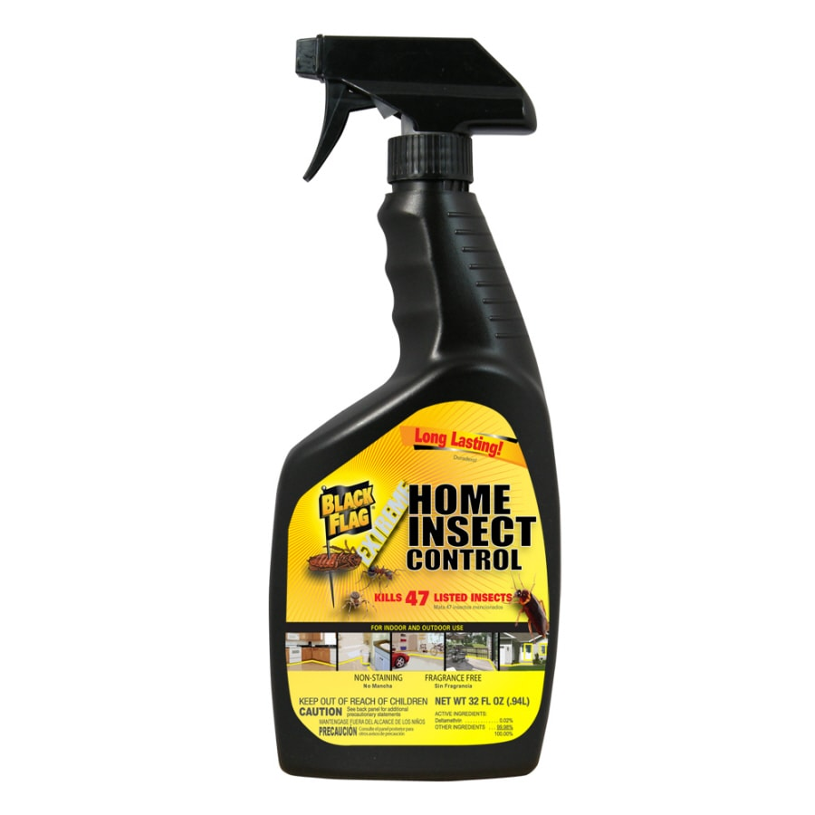 shop black flag 32 oz extreme home insect control spray at lowes com