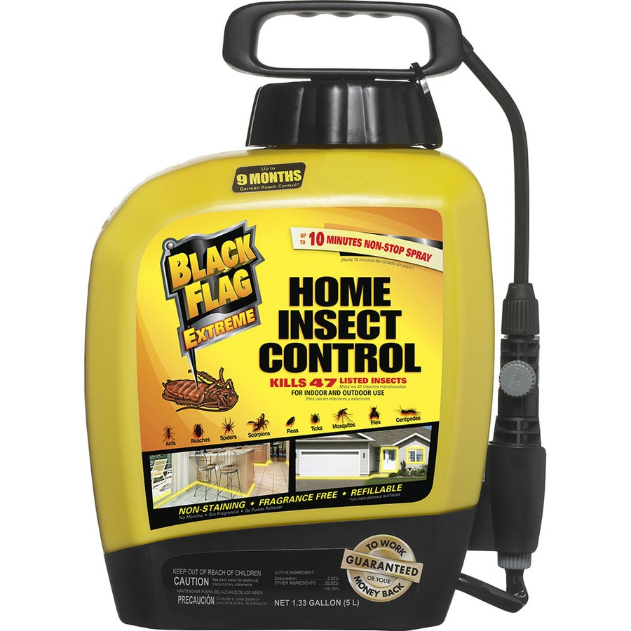 shop black flag 170 oz black flag extreme home insect control at