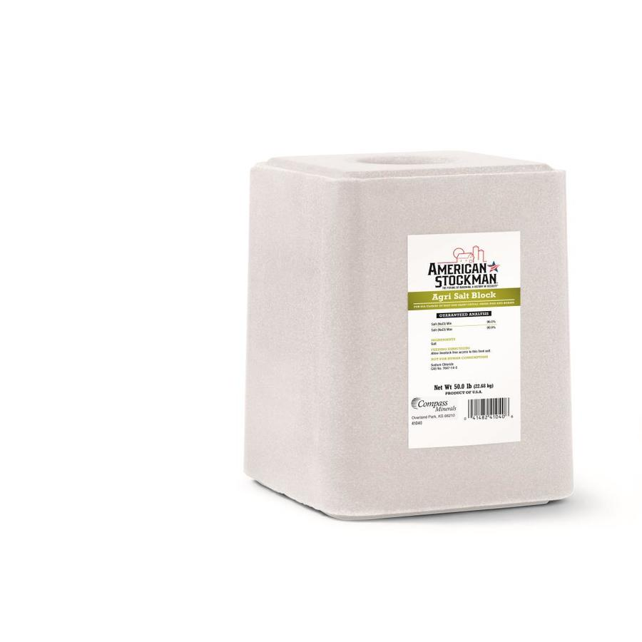 COMPASS MINERALS 50-lb Salt Block
