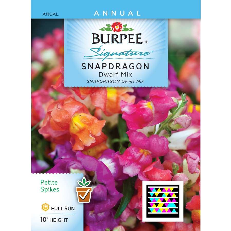 Shop Burpee Snapdragon Flower Seed Packet At Lowes