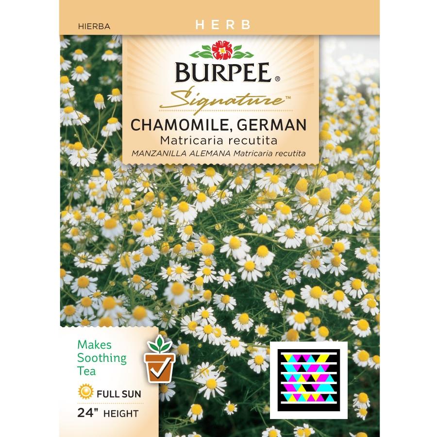 Burpee Chamomile Herb Seed Packet