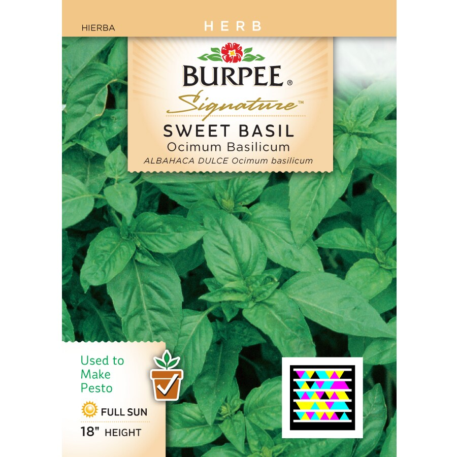 Burpee Basil Herb Seed Packet