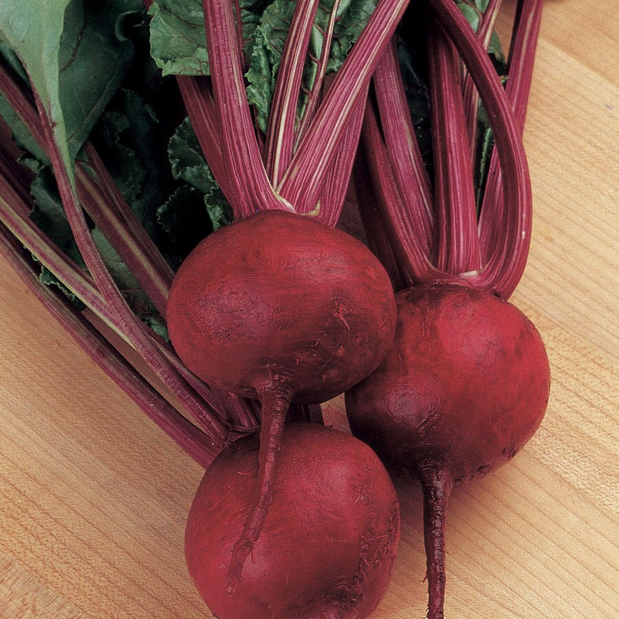 Burpee Red Ball Beet Seed Packet