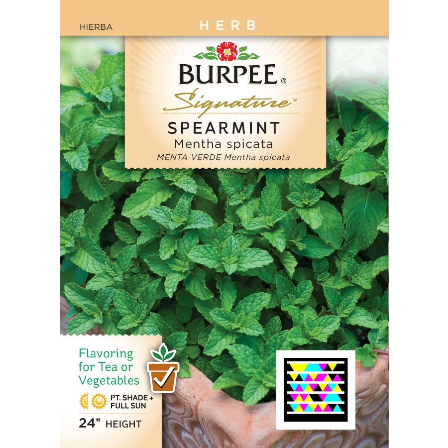 Burpee Spearmint Herb Seed Packet