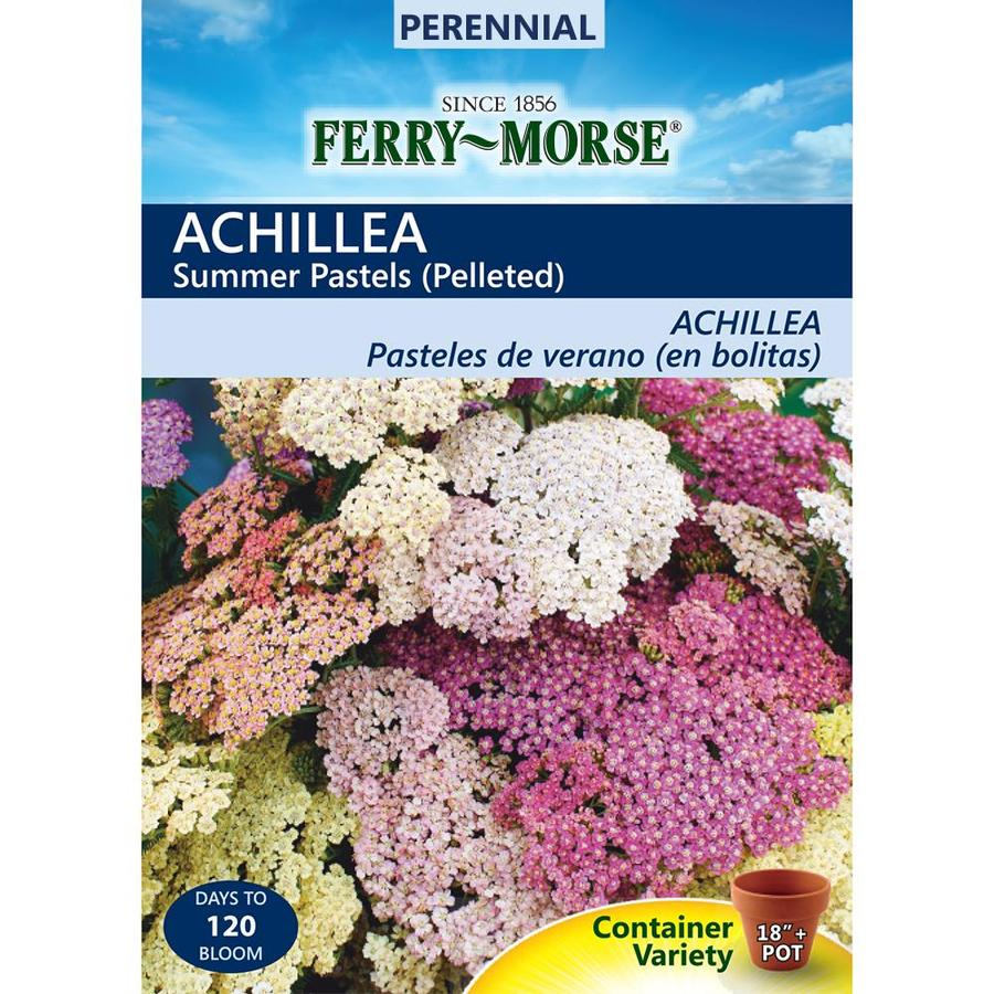 Ferry-Morse 30-Count Yarrow Seeds (L0000)
