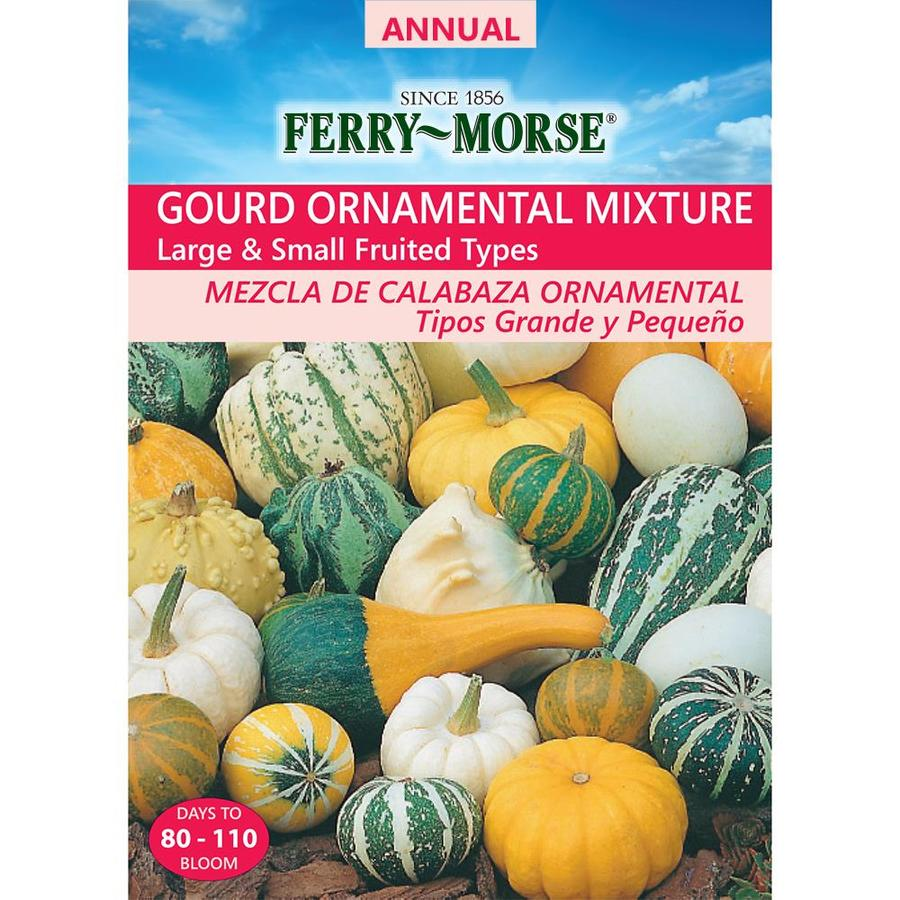 Ferry-Morse 6-Grams Gourd Seeds (L0000)