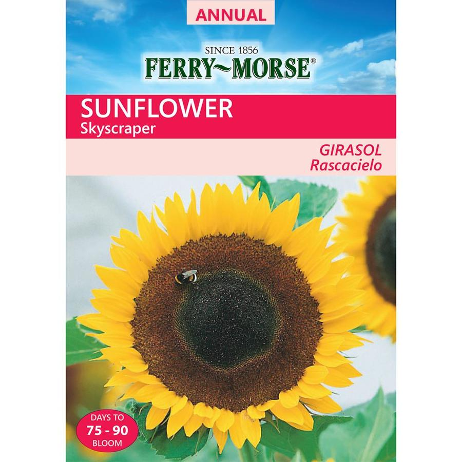 Ferry-Morse 3-Grams Sunflower Seeds (L0000)