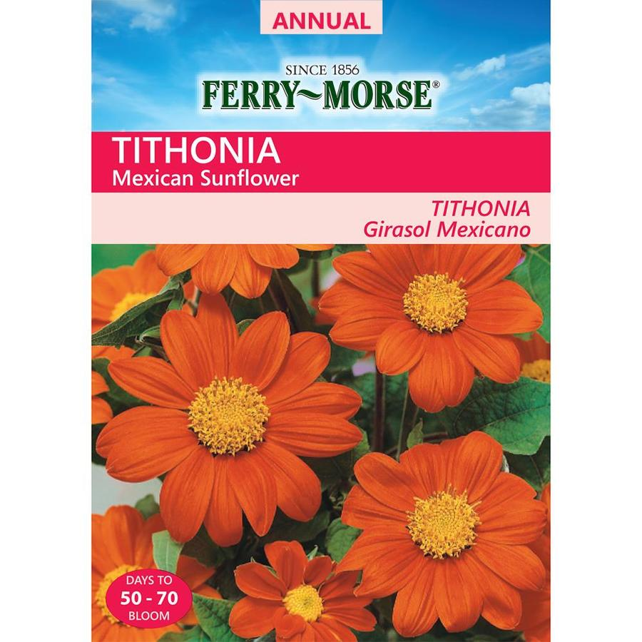 Ferry-Morse 485-Milligrams Mexican Sunfower Seeds (L0000)