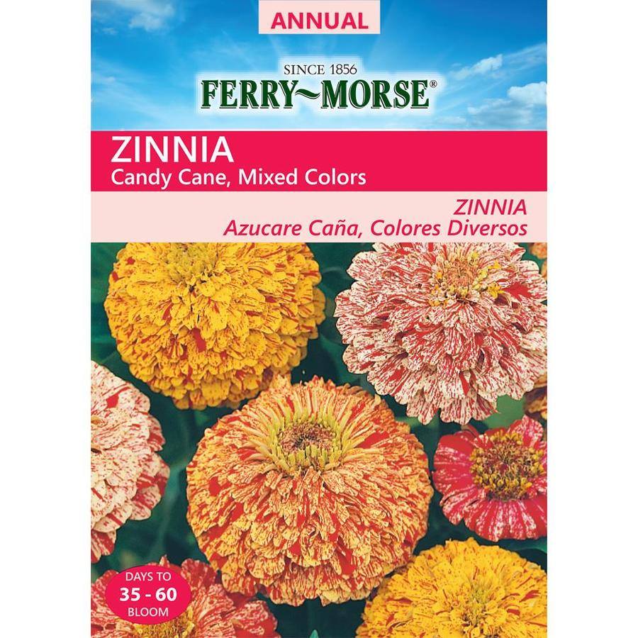 Ferry-Morse 800-Milligrams Zinnia Seeds (L0000)