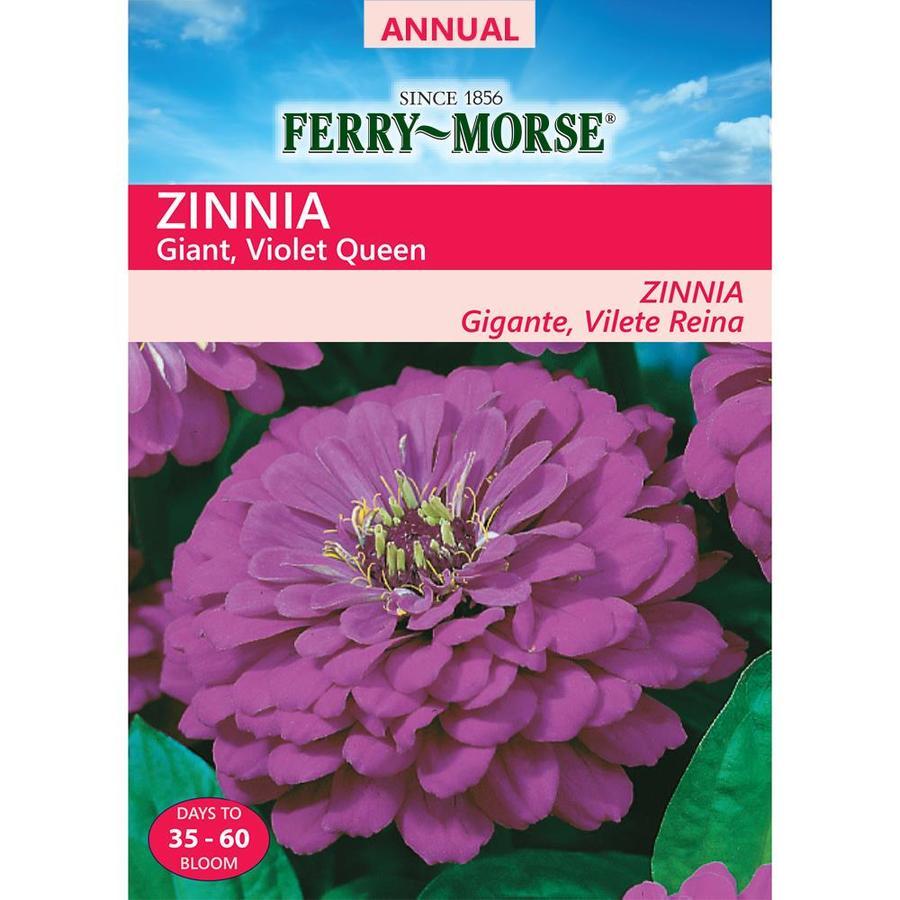 Ferry-Morse 700-Milligrams Zinnia Seeds (L0000)