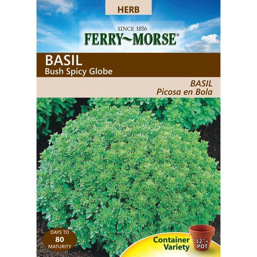 Ferry-Morse 375-mg Basil Bush Spicy Globe (L0000)