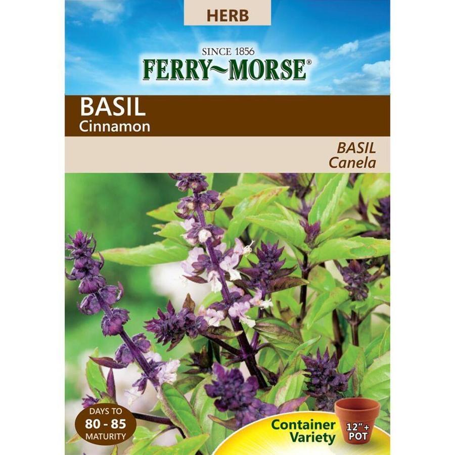Ferry-Morse 300-mg Basil Cinnamon (L0000)