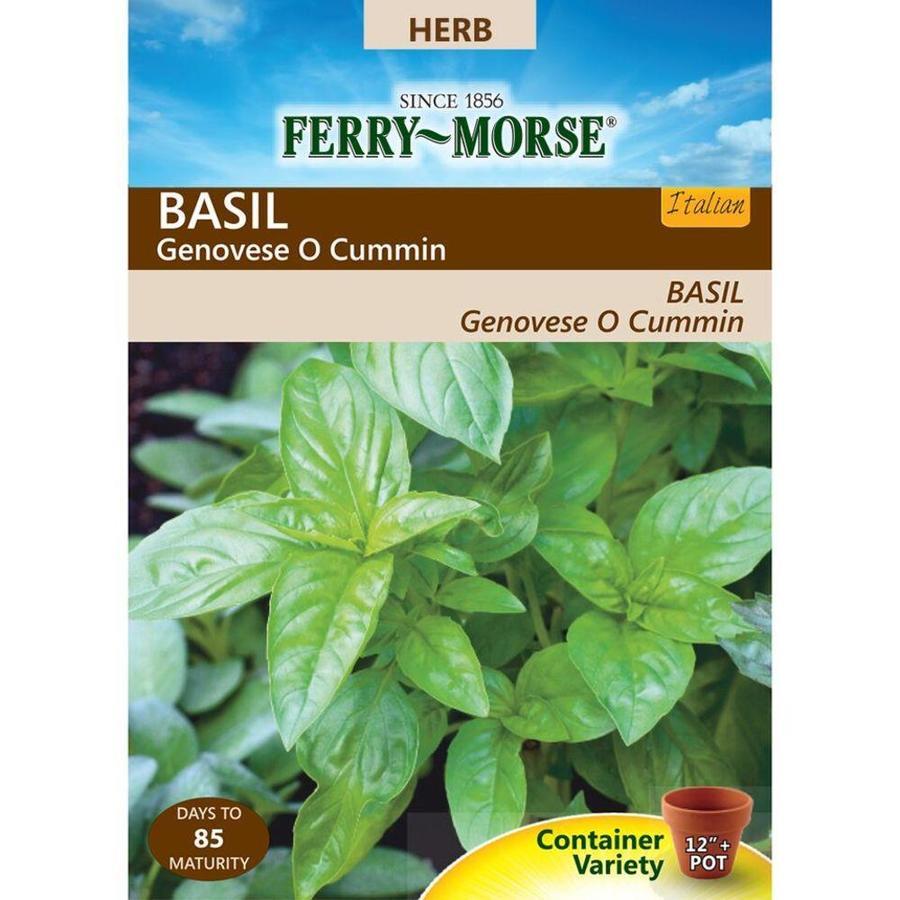 Ferry-Morse 400-mg Basil Genovese O Cummin (L0000)