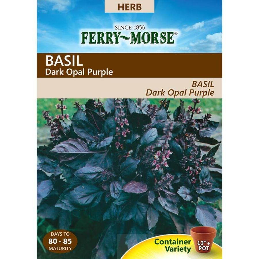 Ferry-Morse 300-mg Basil Dark Opal Purple (L0000)