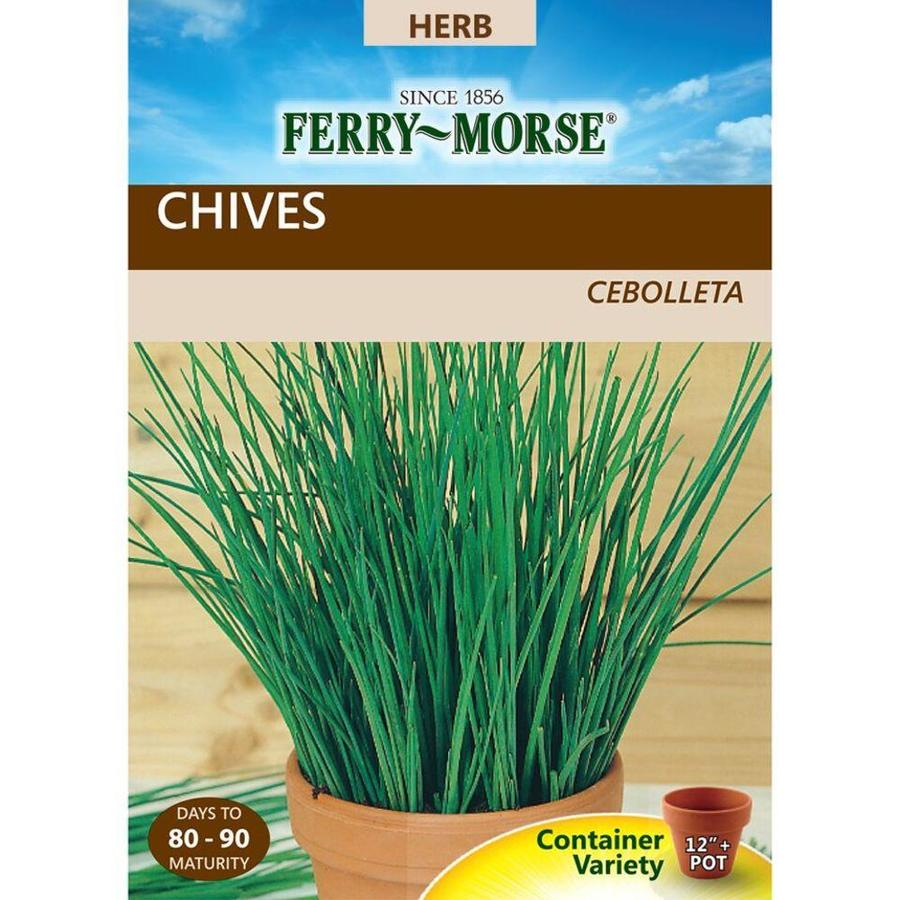 Ferry-Morse 800-mg Chives (L0000)