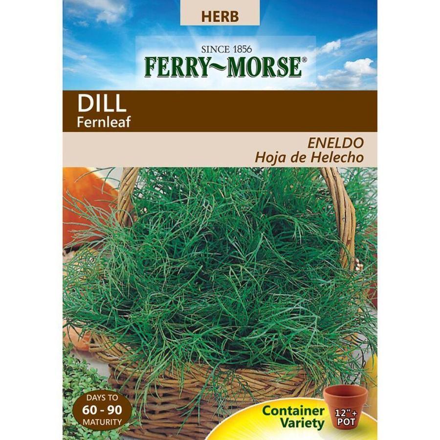 Ferry-Morse 300-mg Dill Fernleaf (L0000)