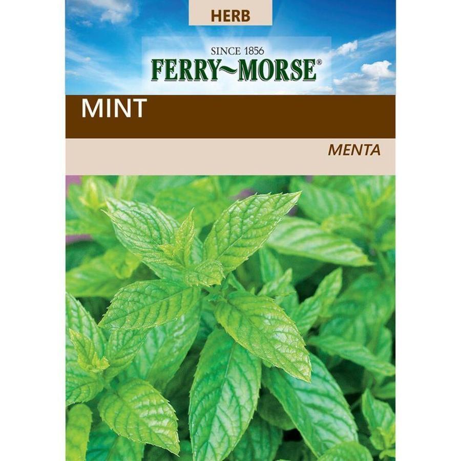 Ferry-Morse 150-mg Mint (L0000)